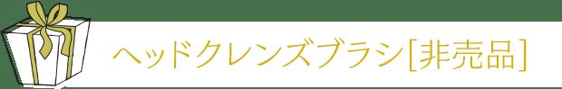 ヘッドクレンズブラシ[非売品]